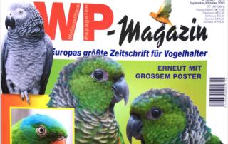 Teaser_WP-Magazin_1015